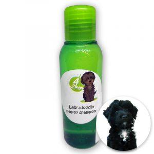 Flesje met labradoodle puppy shampoo